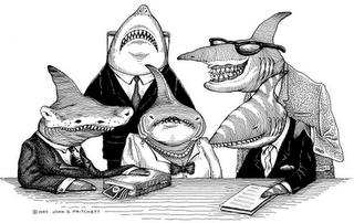 tiburones dinero